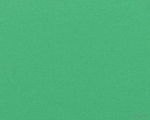 Паспарту (21x30 см; арт. ПУ2766) — фото, картинка