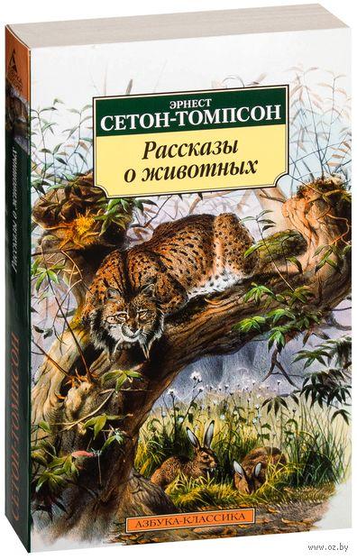 Рассказы о животных — фото, картинка