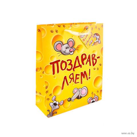 """Пакет бумажный подарочный """"Поздравляем!"""" (18х23х10 см; арт. 10367326)"""