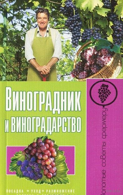 Виноградник и виноградарство. Посадка, уход, размножение, болезни и вредители — фото, картинка
