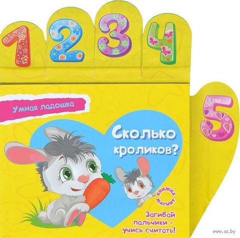 Сколько кроликов? Книжка-магнит. Юлия Юга