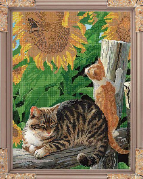 """Вышивка бисером """"Игривый котёнок"""" (500х370 мм) — фото, картинка"""