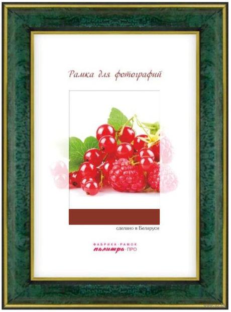 Рамка пластиковая со стеклом (15х21 см; арт. 25/445) — фото, картинка