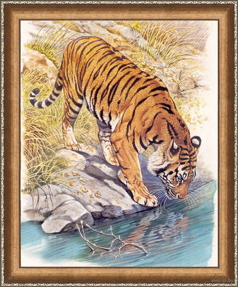 "Алмазная вышивка-мозаика ""Тигр у реки"" (400х500 мм) — фото, картинка"