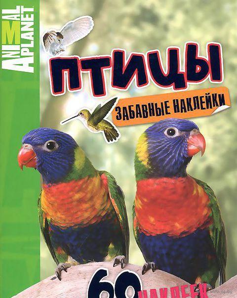 Птицы. Забавные наклейки