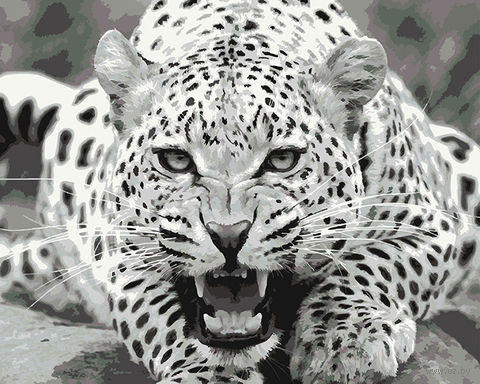"""Картина по номерам """"Дикий и опасный"""" (400х500 мм) — фото, картинка"""