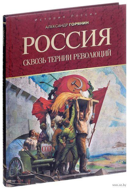 Россия. Сквозь тернии революций — фото, картинка