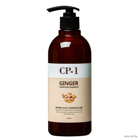 """Шампунь для волос """"Ginger Purifying Shampoo"""" (500 мл) — фото, картинка"""