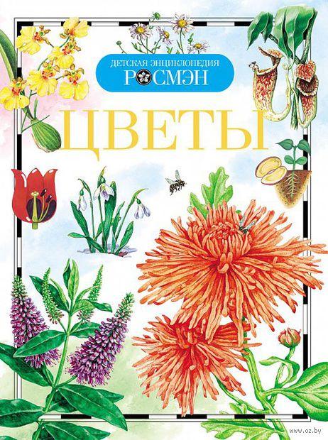 Цветы — фото, картинка