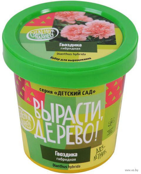 """Набор для выращивания растений """"Гвоздика гибридная"""" — фото, картинка"""