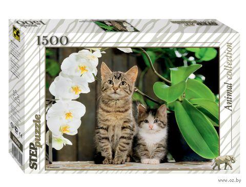 """Пазл """"Котята и орхидея"""" (1500 элементов) — фото, картинка"""