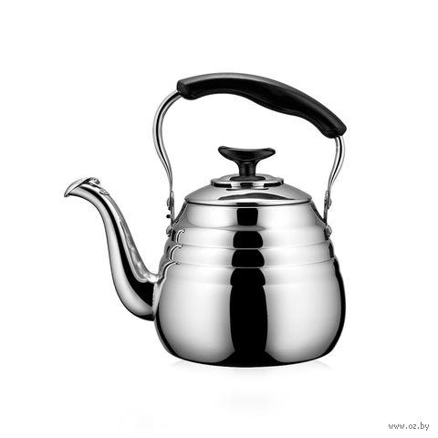 "Чайник металлический со свистком ""Deauville"" (1 л) — фото, картинка"