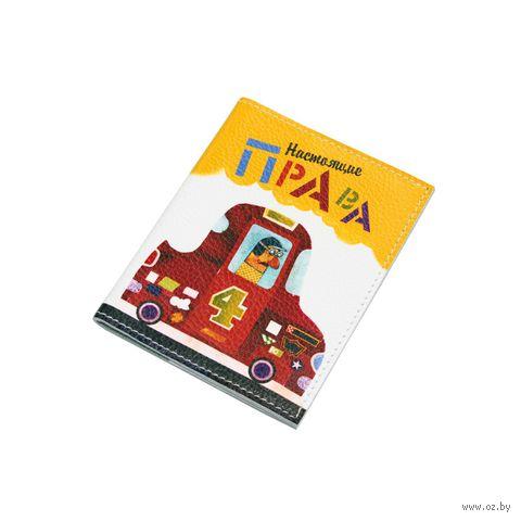 Обложка на автодокументы (арт. A1-17-414) — фото, картинка