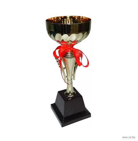 Кубок сувенирный (арт. 1012C) — фото, картинка