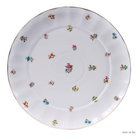 Тарелка фарфоровая (240 мм) — фото, картинка