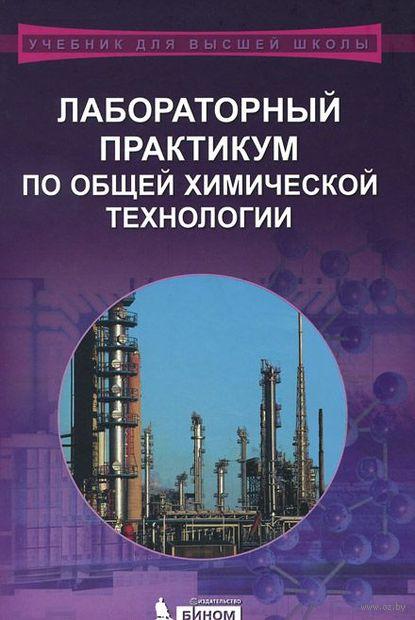 Лабораторный практикум по общей химической технологии. Владимир Бесков