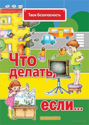 Твоя безопасность. Что делать, если.... Сергей Савушкин, Н. Евдокимова
