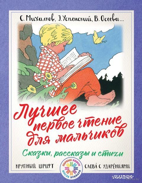 Лучшее первое чтение для мальчиков — фото, картинка