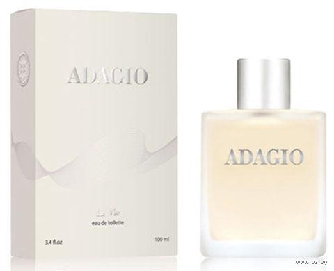 "Туалетная вода для мужчин ""Adagio"" (100 мл)"