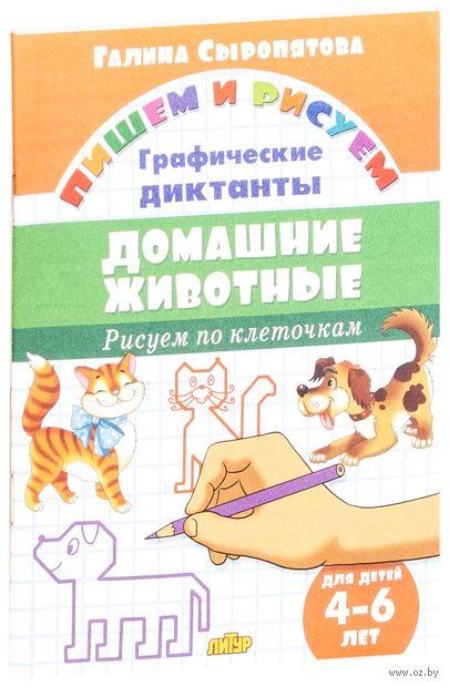 Домашние животные. Рисуем по клеточкам. Для детей 4-6 лет — фото, картинка