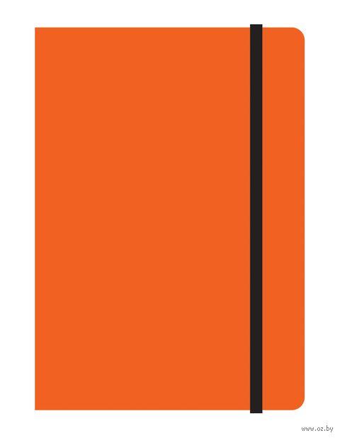 """Тетрадь А6 на резинке в клетку """"Study up"""" 120 листов (арт. 39482)"""
