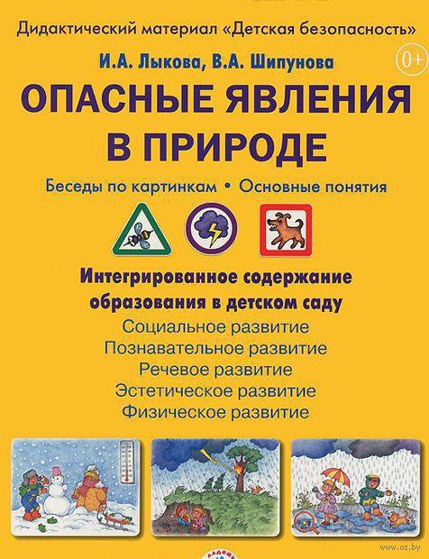 Опасные явления в природе (набор из 8 карточек). Ирина Лыкова, Вера Шипунова