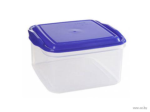 """Контейнер для хранения продуктов """"Alt"""" (1,4 л; лазурно-синий) — фото, картинка"""