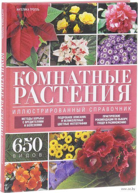 Комнатные растения. Иллюстрированный справочник — фото, картинка