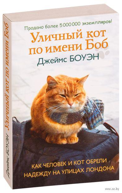 Уличный кот по имени Боб (м) — фото, картинка