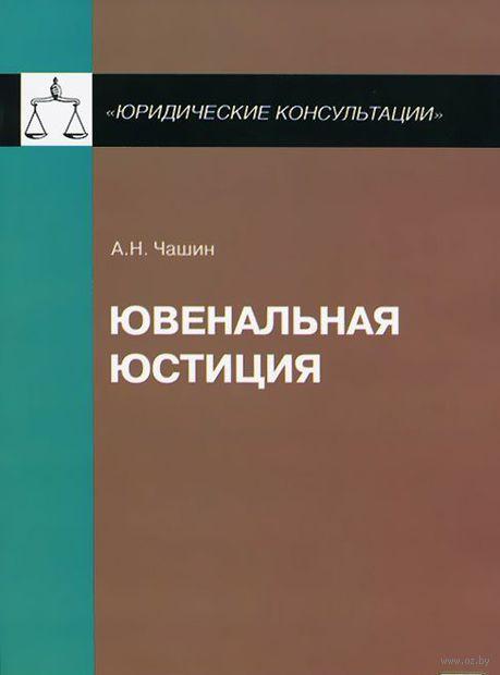 Ювенальная юстиция. Александр Чашин