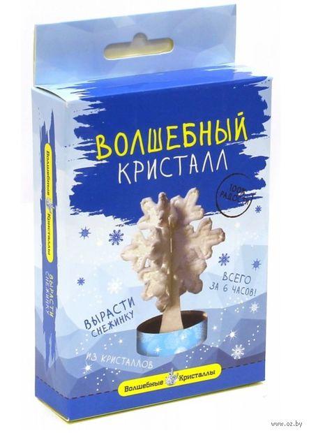 """Набор для выращивания кристаллов """"Снежинка"""" — фото, картинка"""
