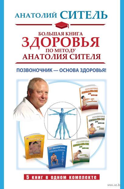 Большая книга здоровья по методу Анатолия Сителя. Позвоночник - основа здоровья! (Комплект из 5 книг) — фото, картинка
