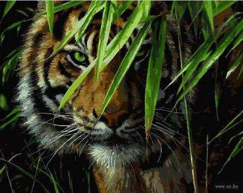 "Картина по номерам ""Взгляд зеленых глаз"" (400х500 мм) — фото, картинка"