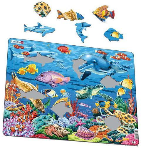 "Пазл-рамка ""Коралловый риф"" (35 элементов) — фото, картинка"