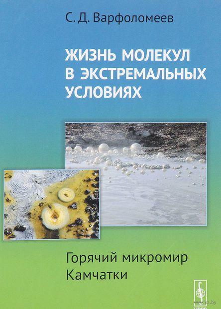 Жизнь молекул в экстремальных условиях. Горячий микромир Камчатки — фото, картинка