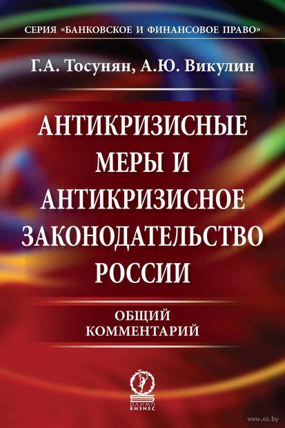 Антикризисные меры и антикризисное законодательство России. Общий комментарий — фото, картинка