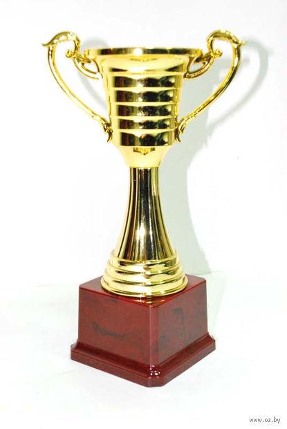 Кубок сувенирный (арт. HB2006-A) — фото, картинка