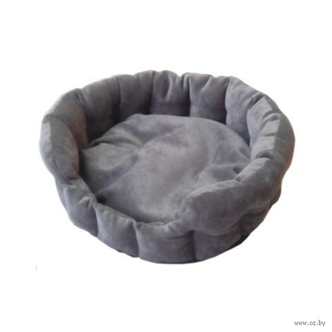 Лежак для животных (43х16 см; графит) — фото, картинка