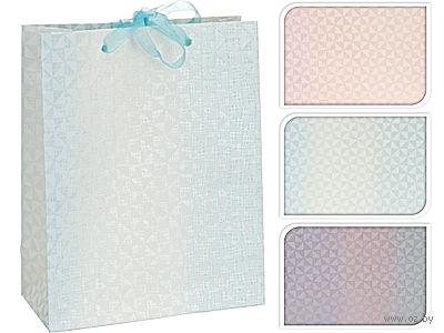 Пакет бумажный подарочный (в ассортименте; 18х23 см; арт. A59800220)