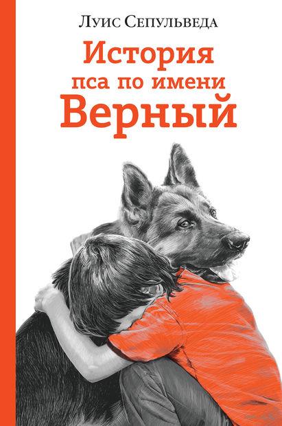 История пса по имени Верный — фото, картинка