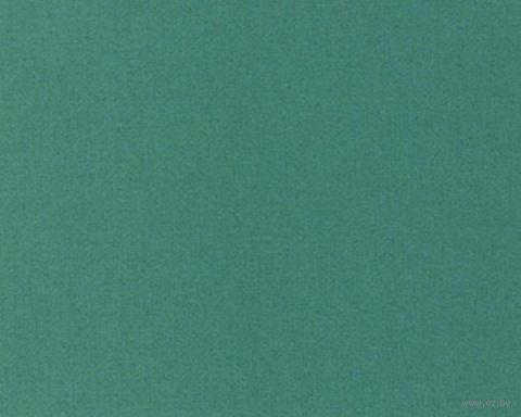 Паспарту (6,5x9 см; арт. ПУ2767) — фото, картинка