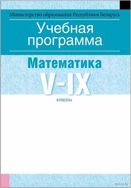 Учебная программа для учреждений общего среднего образования с русским языком обучения и воспитания. Математика. V-IX клаcсы — фото, картинка