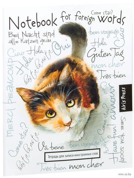 """Тетрадь для записи иностранных слов """"Любопытная кошка"""""""