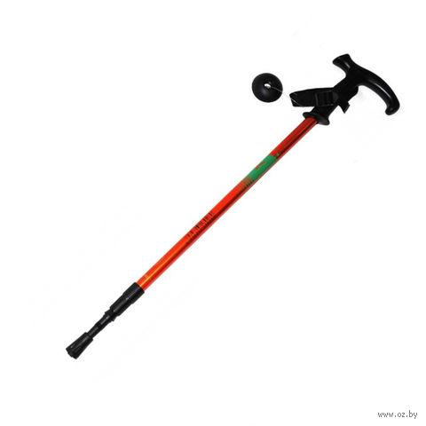 Палка для скандинавской ходьбы трёхсекционная (65-135 см; арт. DS2) — фото, картинка