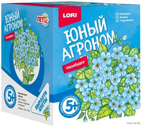 """Набор для выращивания растений """"Незабудка"""" — фото, картинка"""