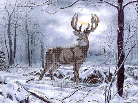 """Канва с нанесенным рисунком """"Король лес"""""""