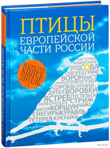 Птицы Европейской части России. Василий Вишневский