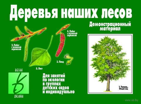 """Игра """"Деревья наших лесов"""""""