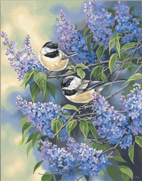 """Картина по номерам """"Синицы в сирени"""" (360х280 мм; арт. DMS-91361)"""