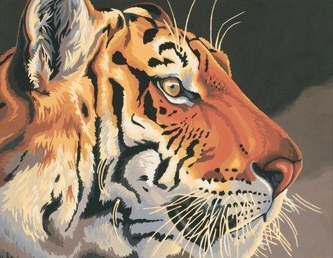 """Картина по номерам """"Тигр"""" (280х360 мм; арт. DMS-91323)"""